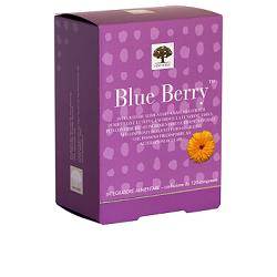 BLUE BERRY 60 COMPRESSE