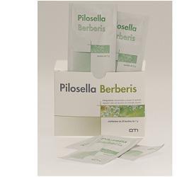 PILOSELLA-BERBERIS 30BUS