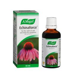 ECHINAFORCE GOCCE 50ML VOGEL