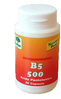 B5 500 50CPS