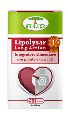 LIPOLYSAR LONG ACTION 45 CAPSULE