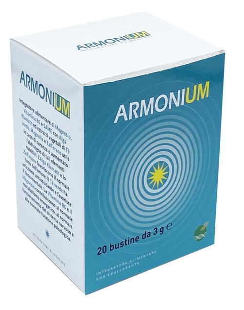 ARMONIUM 20 BUSTINE DA 3 G